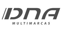 Logo DNA Multimarcas - Aracaju