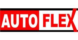 Logo Auto Flex