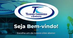 Logo TEIXEIRA CAMINHÕES